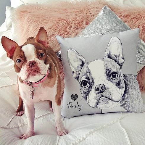 Customized dog pillow