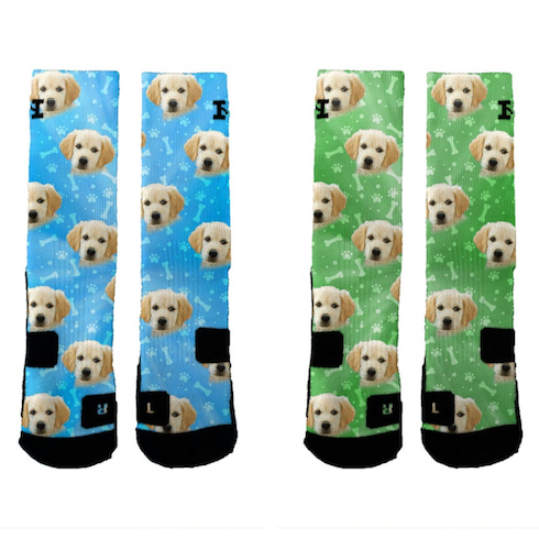 Blue and green dog socks