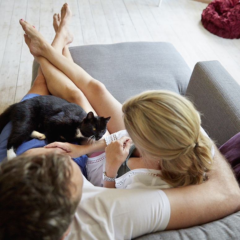 Man and woman cuddling on grey couch with black cat sitting on their laps
