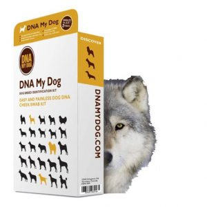 DNA my dog test kit