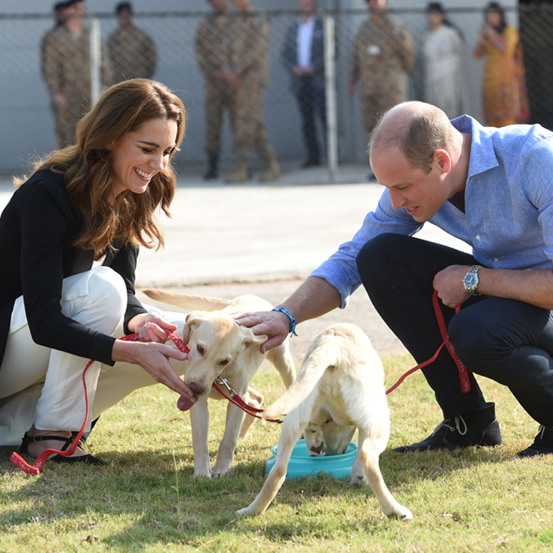 Duchess Kate and Prince William kneel down and pet two white dogs at a royal engagement